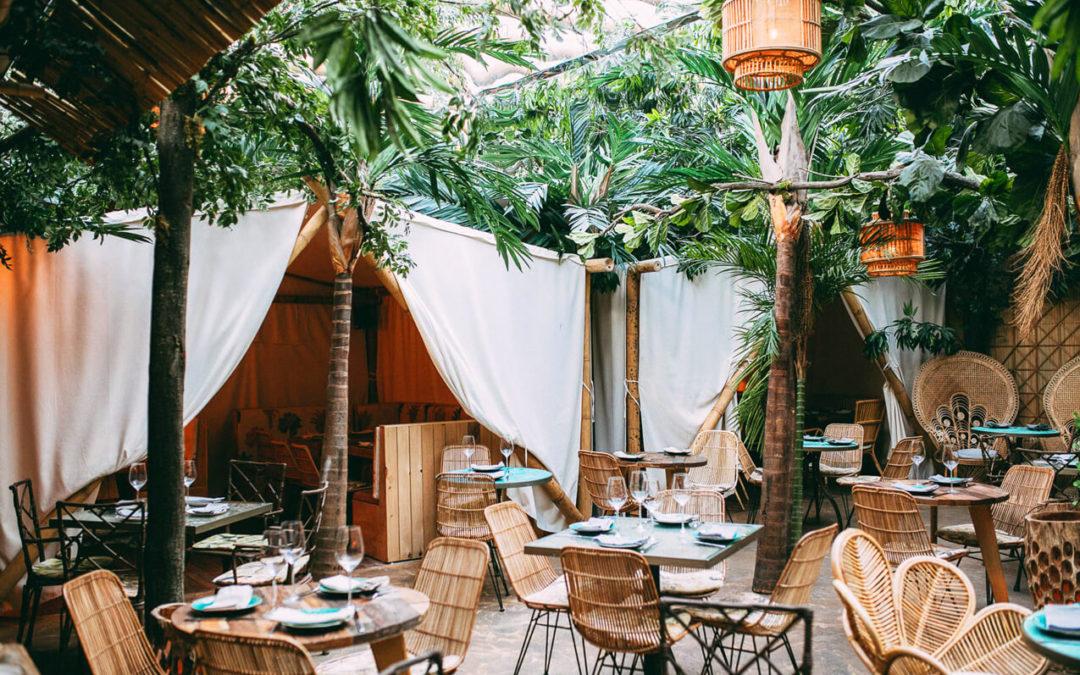 Voltereta Bali: nature, food & background sound reinforcement